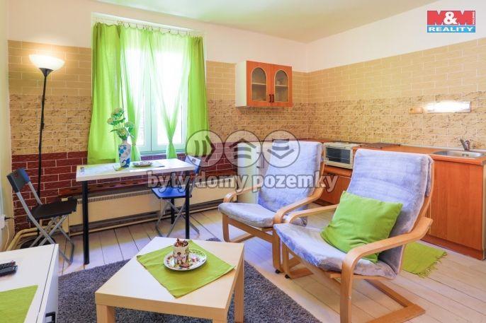 Pronájem, Byt 1+kk, 40 m², Karlovy Vary, Sopečná