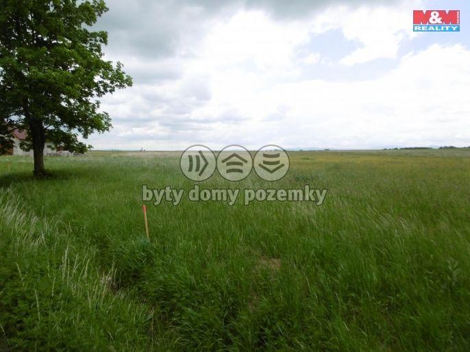 Prodej, Pozemek k bydlení, 1500 m², Suchdol nad Lužnicí