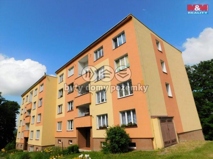 Prodej, Byt 1+1, 38 m², Plesná, Světlá