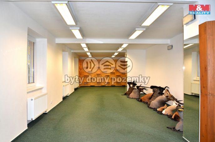 Pronájem, Obchod a služby, 124 m², Opava, U Pošty