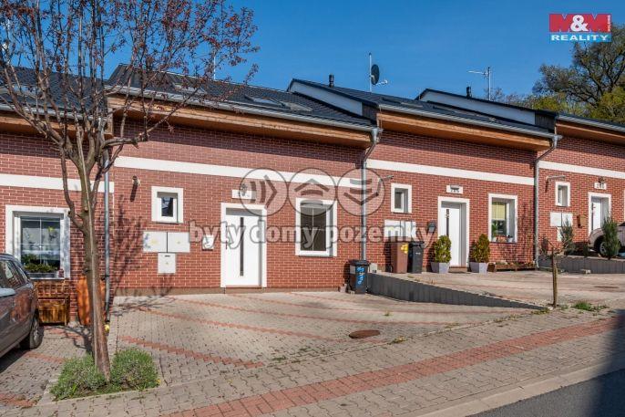 Pronájem, Rodinný dům, 315 m², Nelahozeves, Zimní