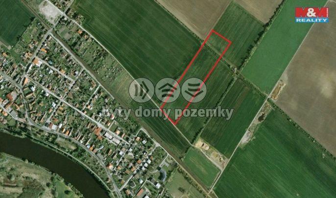Prodej, Pole, 38171 m², Poděbrady