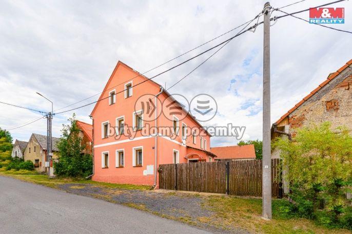 Prodej rodinného domu, 175 m², Pšov