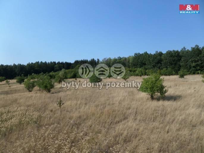 Prodej, Louka, 5715 m², Tatenice
