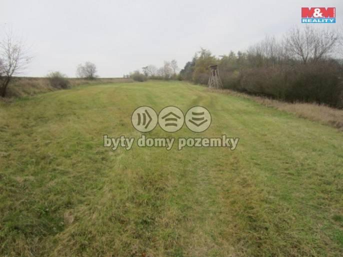 Pozemek zemědělský na prodej, Beřovice
