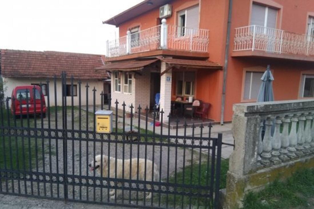 Kuce u Valandovskoj 17 u Lazarevcu