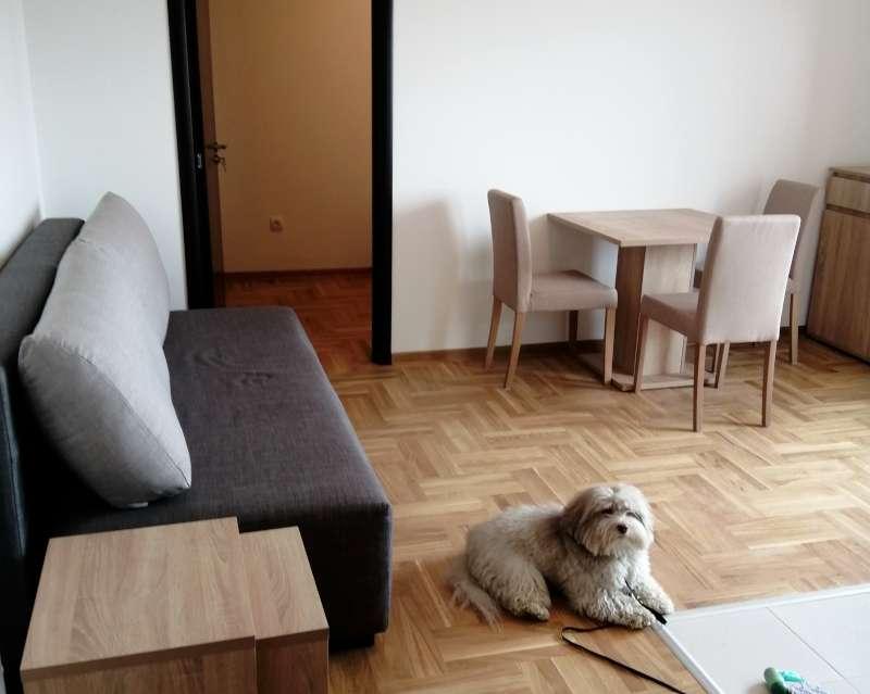 Izdaje se stan, namešten, Novi Beograd(Blokovi), Beograd, Srbija