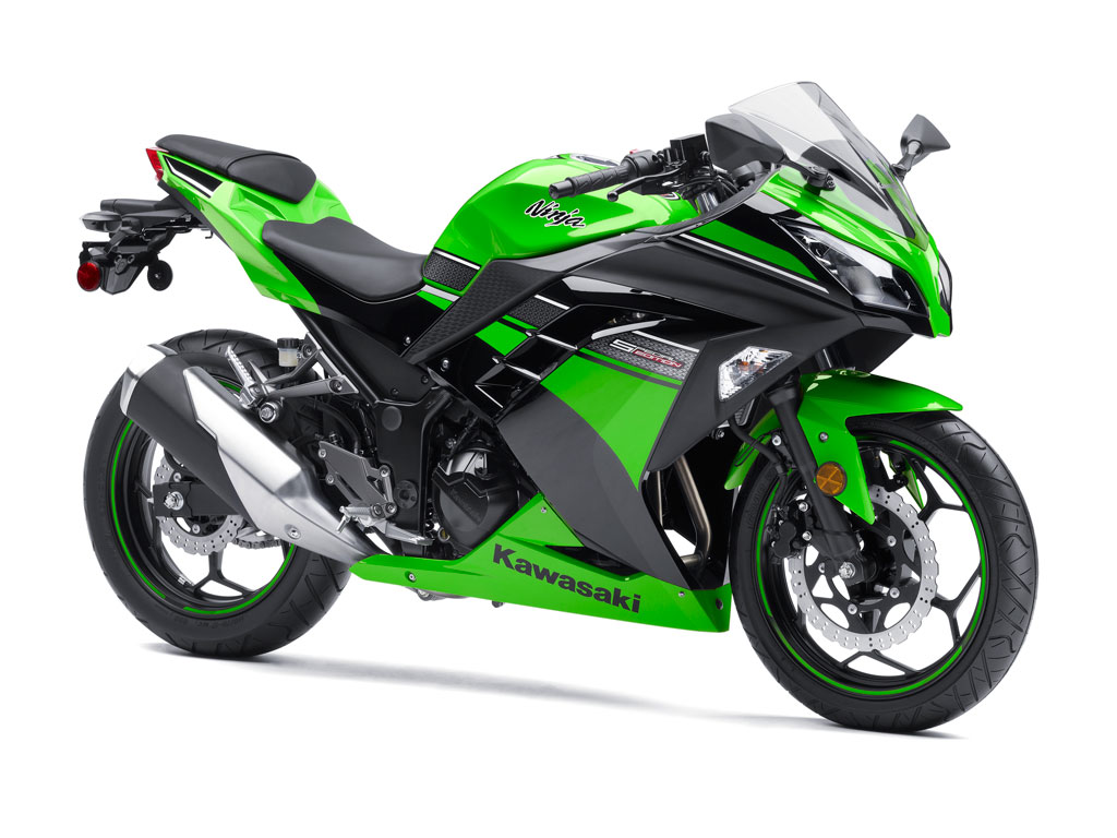 2013 Kawasaki Ninja 300 Side View