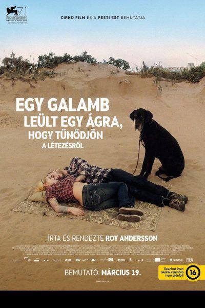 Egy galamb leült egy ágra, hogy tűnődjön a létezésről – Plakát