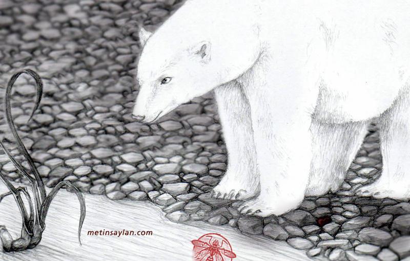 polar_bear_by_metinsaylan