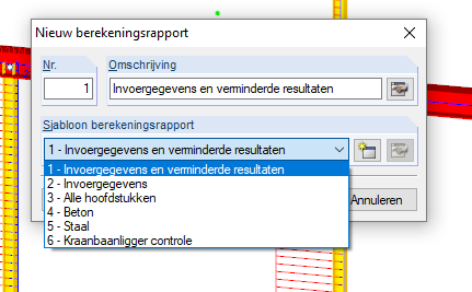 Berekeningsrapport sjabloon data invoer in RFEM rekensoftware