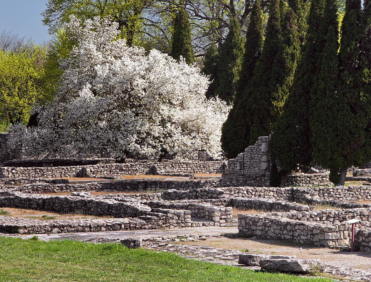 Romkerti tavasz - ciprusok árnyékában