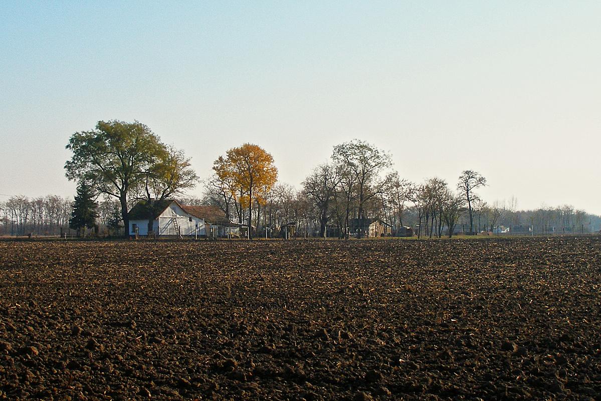 A puszta ősszel