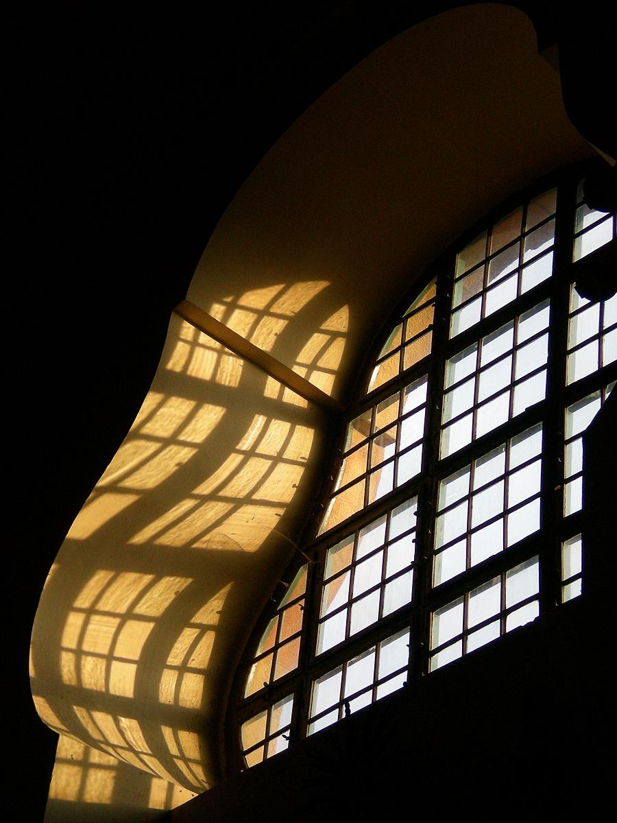 Lant-árnyék