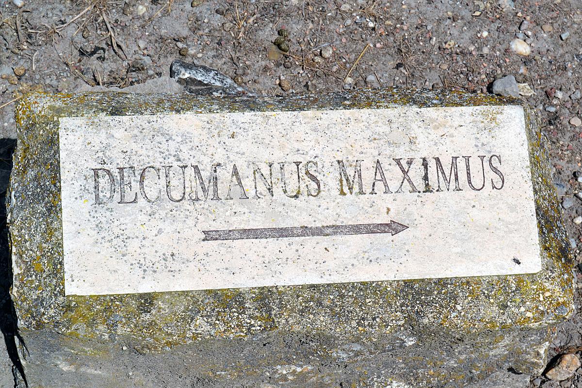 A latin felirat