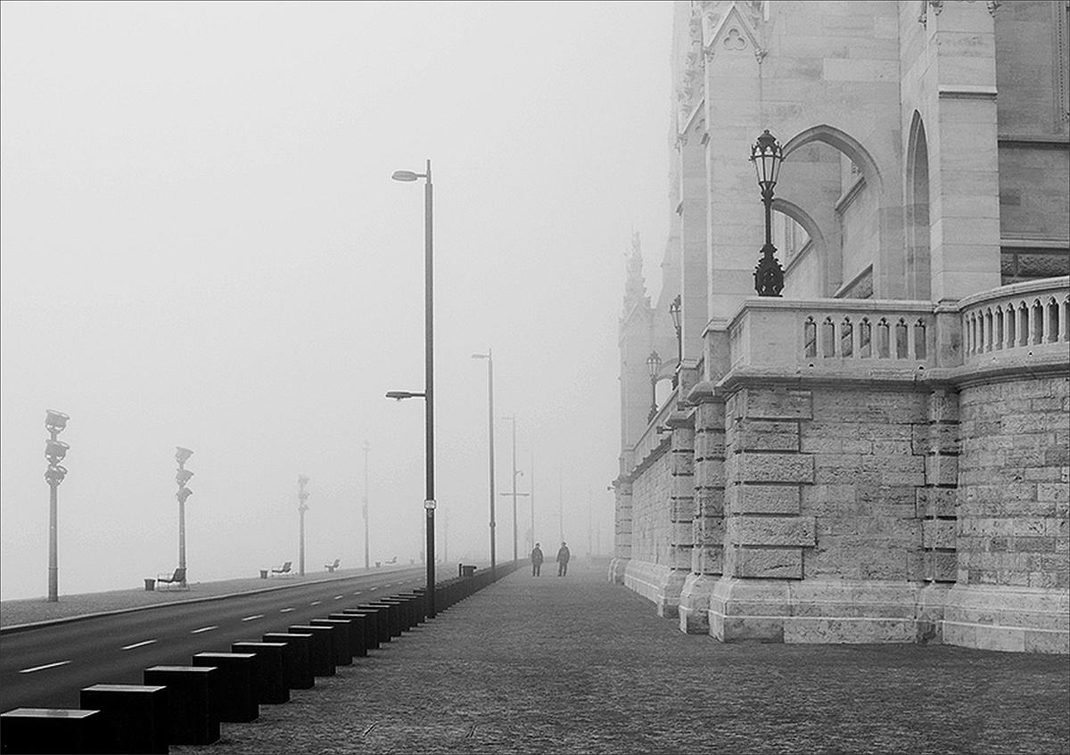 Köd utánuk