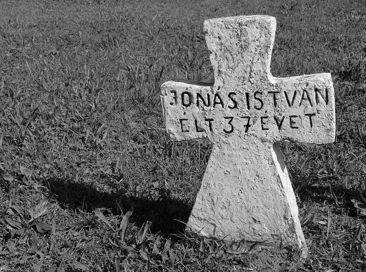 Jónás István emlékére