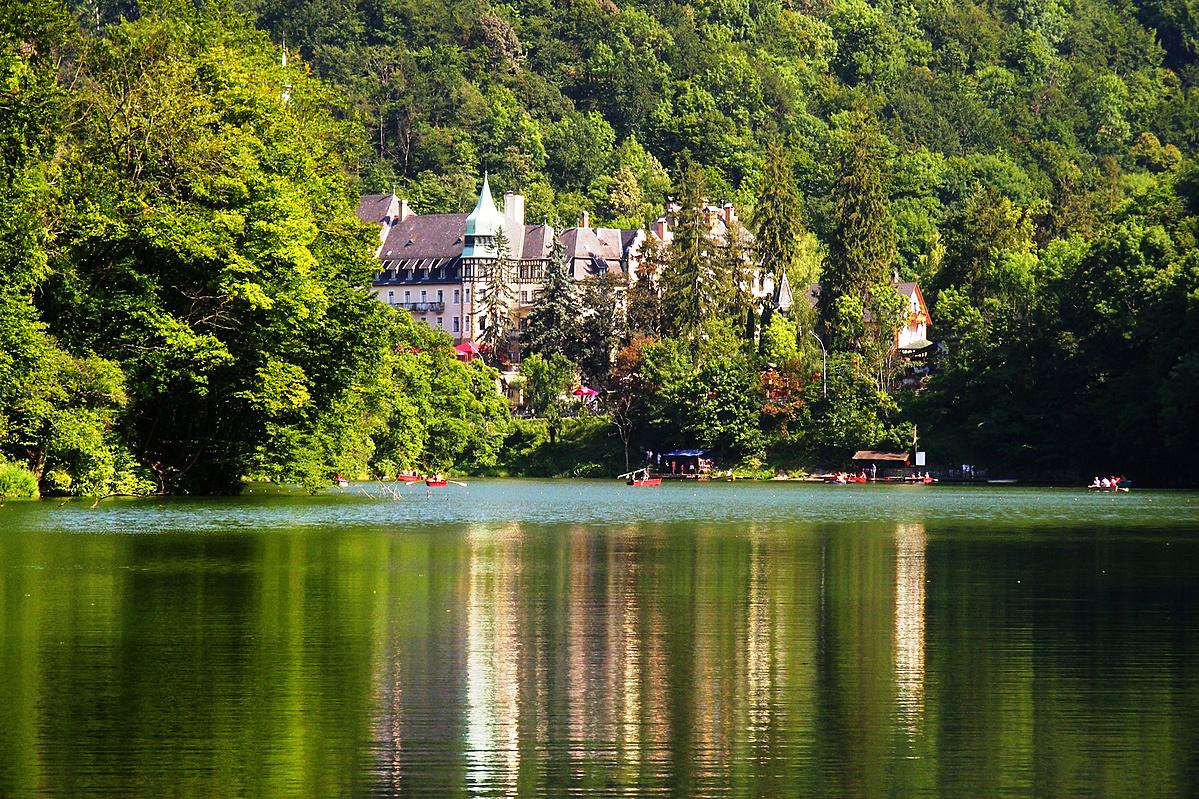Van egy zöld tó a fák alatt ...