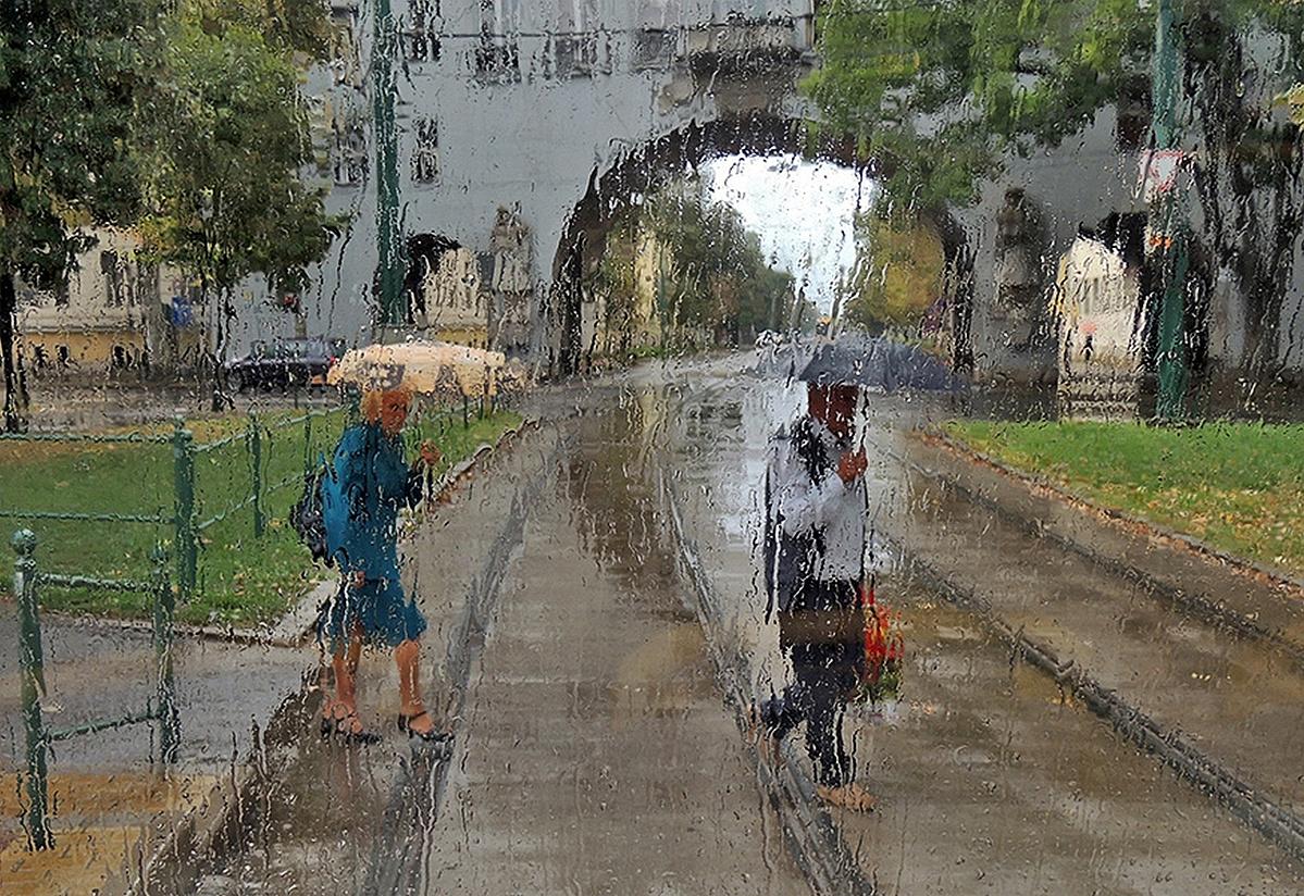Egy esős vasárnap délelőtt...