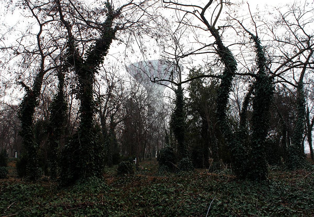 Torony a temetőben