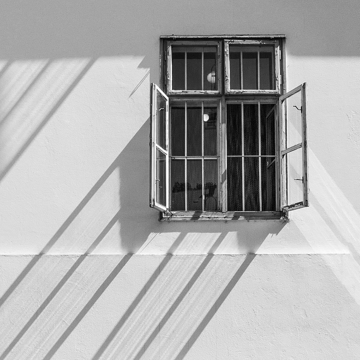 Téma az ablakban