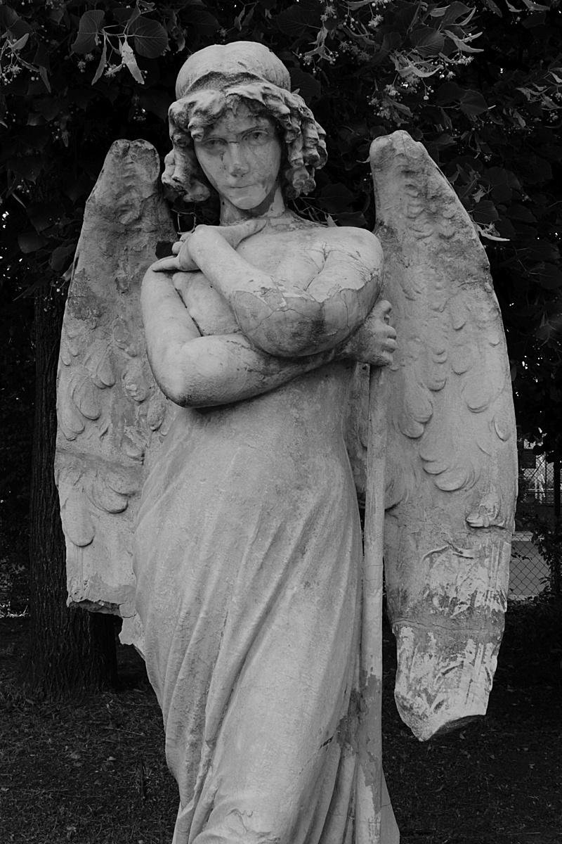 Megőrzött angyal