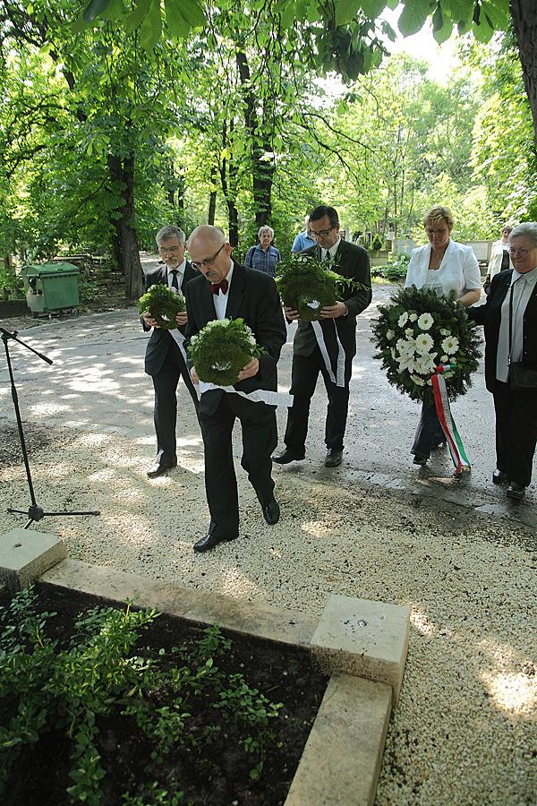 http://www.muemlekem.hu/images/magazin/20100527mollersir/002.jpg