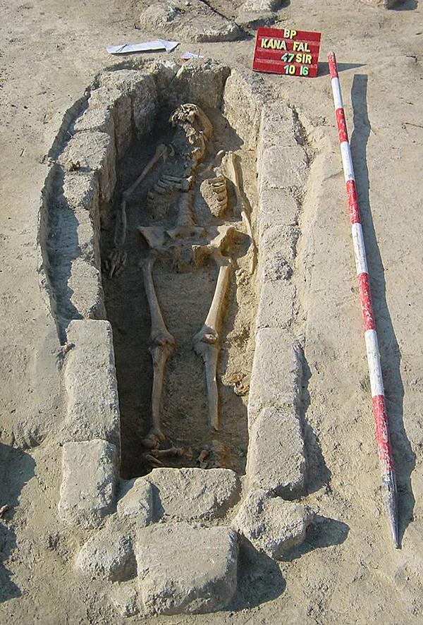 http://www.muemlekem.hu/images/magazin/20110505kanaemlekmu/04.jpg
