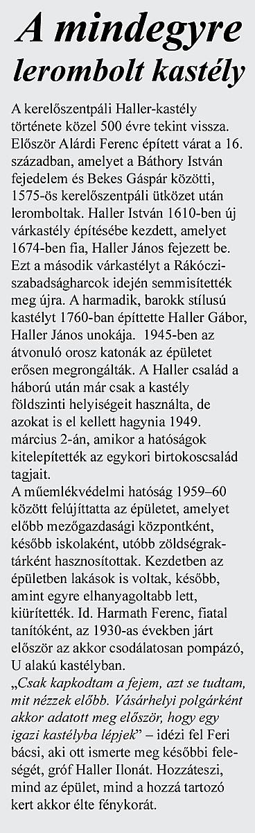 http://www.muemlekem.hu/images/magazin/20111203hallerkastely/keretes.jpg