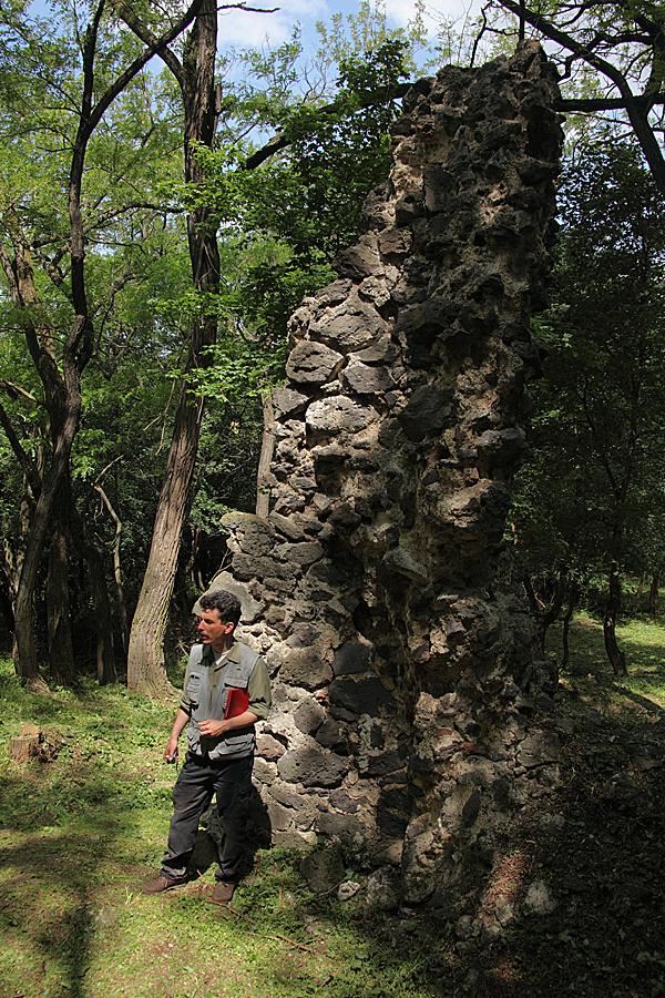 http://www.muemlekem.hu/images/magazin/20120528almadiapaptsag/02.jpg