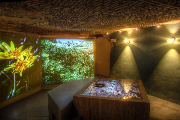 La maison des anciens remèdes - Centro sull'uso delle piante officinali