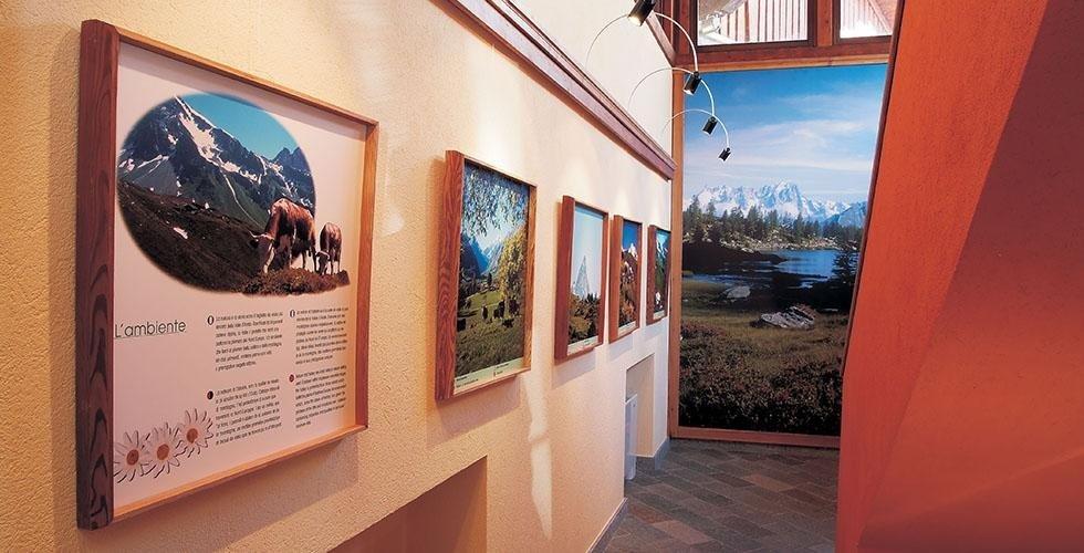 Museo della Fontina e Centro visitatori