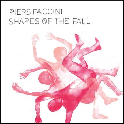 Piers Faccini il nuovo album è Shapes of the Fall foto