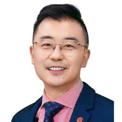 Prof. Dr. Liu  Feng