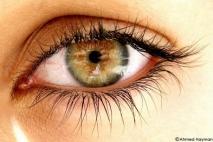 עיניים יפות
