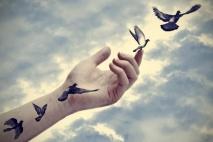 אהבה שבורת כנף