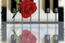 אני מנגן זיכרון לתמונת ההשראה. אותו שיר ששר לה את שיר האהבה,  הנשימה האחרונה.