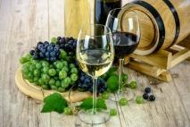 קורס יין – למי זה מתאים?