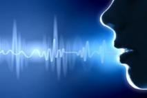 למצוא את הקול