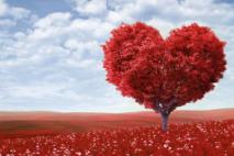 עץ אהבתנו