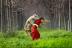 """כיפה אדומה והזאב- """"הסיפור האמיתי"""""""