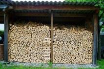כל מה שרציתם לדעת על עצים להסקה איכותיים
