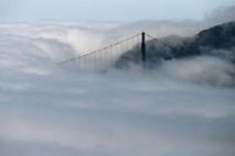 לוטה בערפל