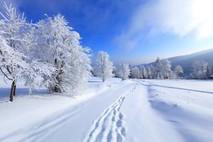 החורף שלי