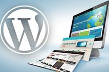 מהי Wordpress? סקירת פלטפורמת ה CMS הפופולארית בעולם