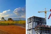 הדר ברוקנשטיין על המתח בין ענף החקלאות לענף הבנייה