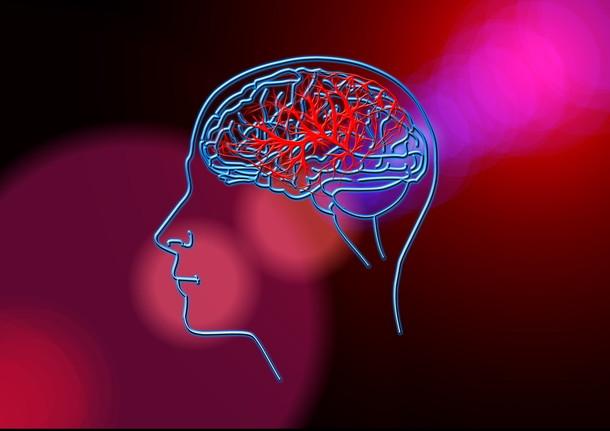 הסיבות לאירוע המוחי יכולות להיות בעיקר על רקע של חסימה, תהליך טרשתי או תסחיף
