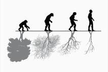 ג'ונגל אנושי