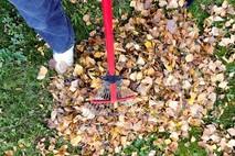 פעולות תחזוקה שעל ועד הבית לבצע בהתאם לעונות השנה