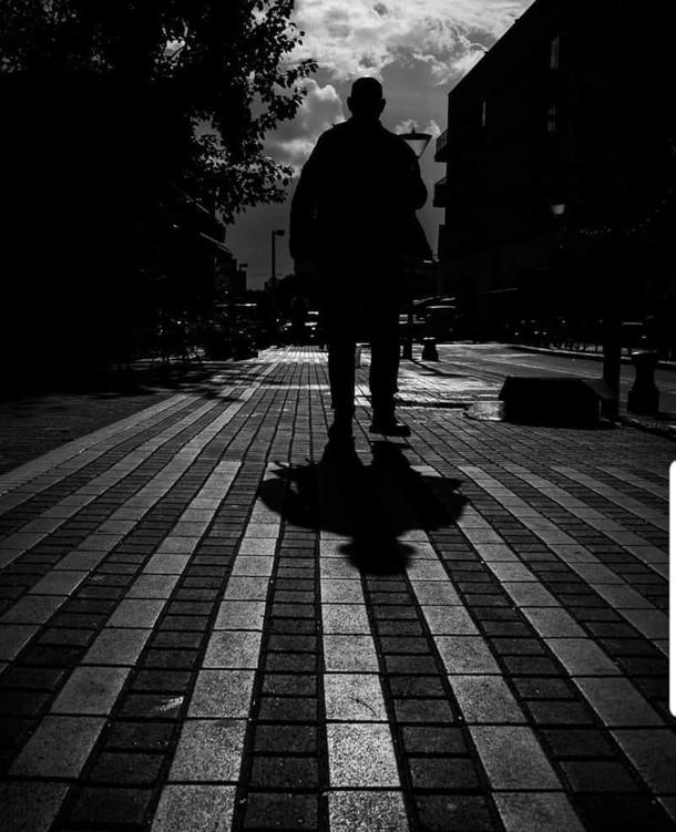 צילום : תומר אלמקייס